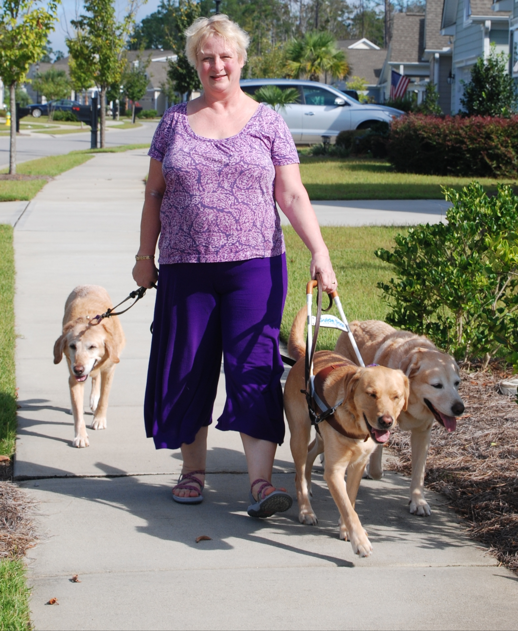 KaeAnn walks with a guide dog, Debra, with two retired guide dogs, Melody and Thor, heeling on each side.